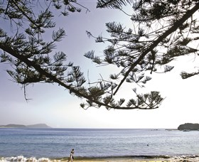 Terrigal Beach - Accommodation Cairns