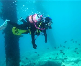 Shellharbour Scuba  Photography Centre - Accommodation Cairns