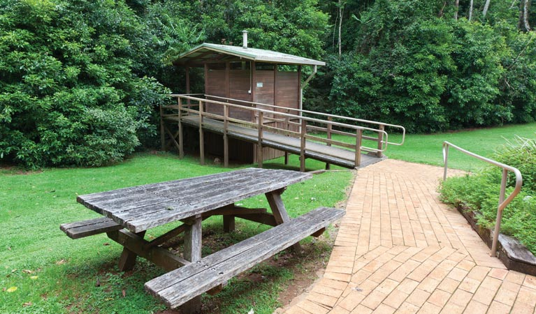 The Glade picnic area - Accommodation Cairns