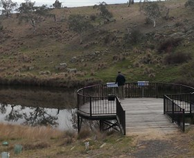 Bombala Platypus Reserve - Accommodation Cairns