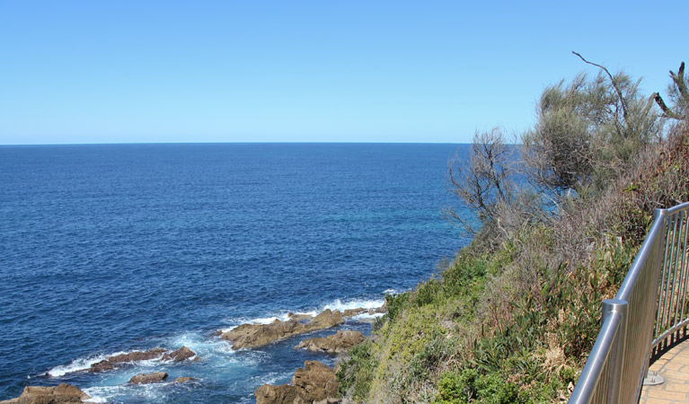 Moruya Heads lookout - Accommodation Cairns