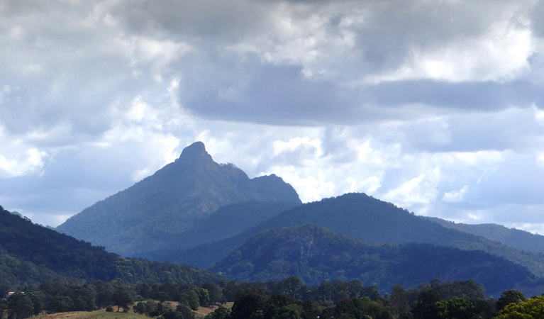 Wollumbin National Park - Accommodation Cairns
