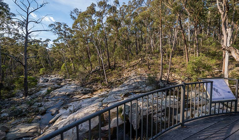 Myanba Gorge walking track - Accommodation Cairns