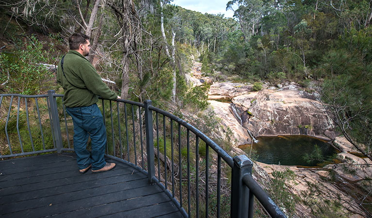 Biamanga National Park - Accommodation Cairns