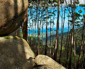 Mount Gulaga Mount Dromedary Walk - Accommodation Cairns