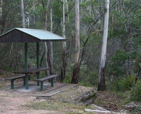 White Rock River picnic area - Accommodation Cairns