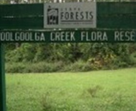 Woolgoolga Creek Flora Reserve - Accommodation Cairns