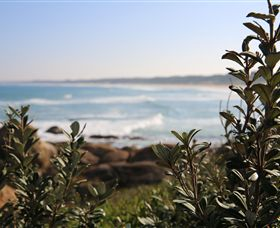 Cape Conran Nature Trail