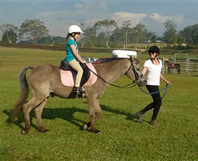 Port Macquarie Horse Riding Centre - Accommodation Cairns