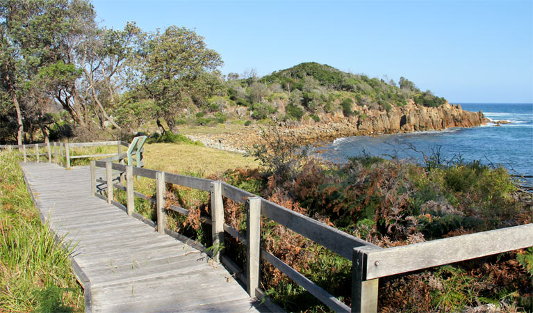 Mimosa Rocks walking track - Accommodation Cairns