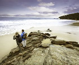 Wilderness Coast Walk