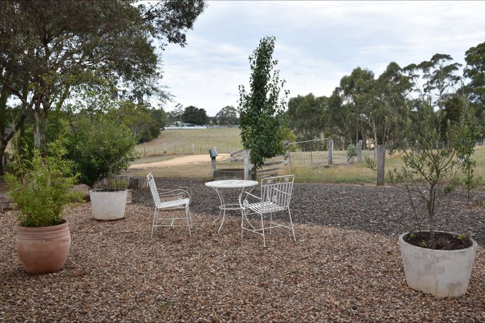 Cygnet Park Country Retreat - Accommodation Cairns