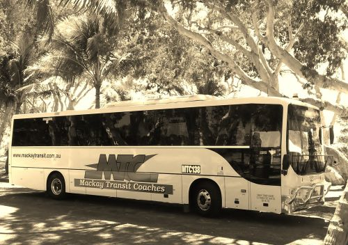Mackay Transit Coaches - Accommodation Cairns