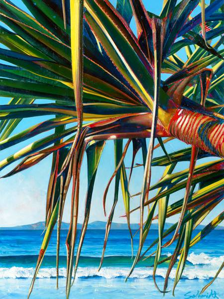 Susan Schmidt Art - Accommodation Cairns