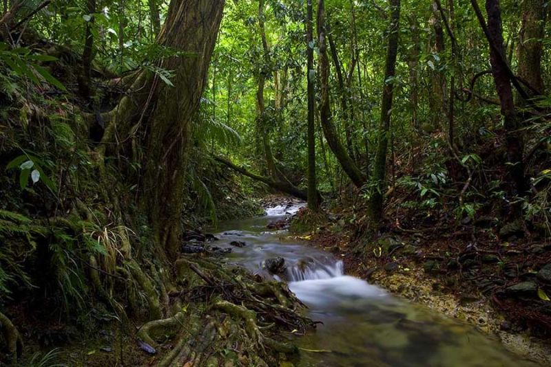 Trek North - Accommodation Cairns