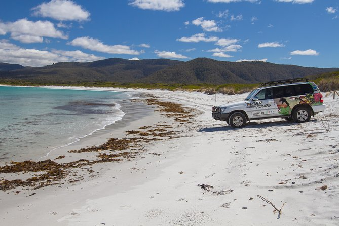 4X4 and Lunch Half Day Bicheno Coastal Mountain - Accommodation Cairns
