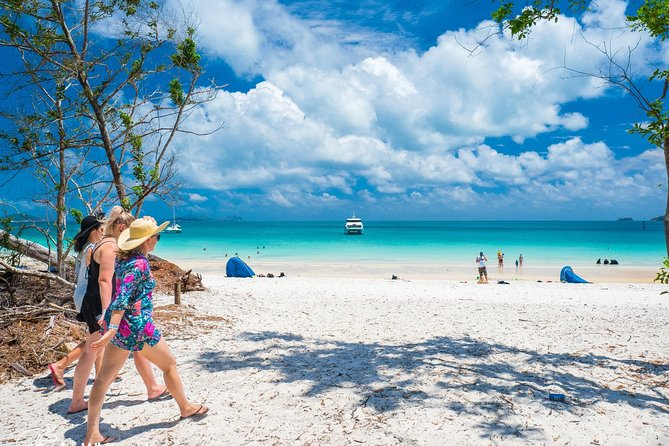 Whitehaven Beach Half-Day Cruises - Accommodation Cairns