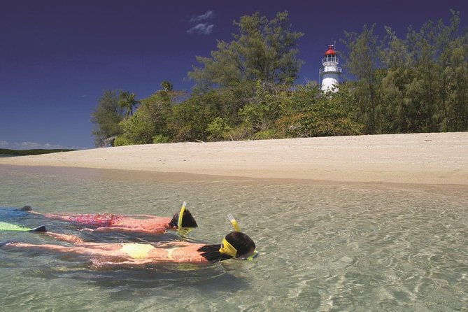 Wavedancer Low Isles Great Barrier Reef Sailing Cruise from Palm Cove - Accommodation Cairns