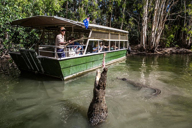 Hartley's Crocodile Adventures Day Trip from Palm Cove - Accommodation Cairns