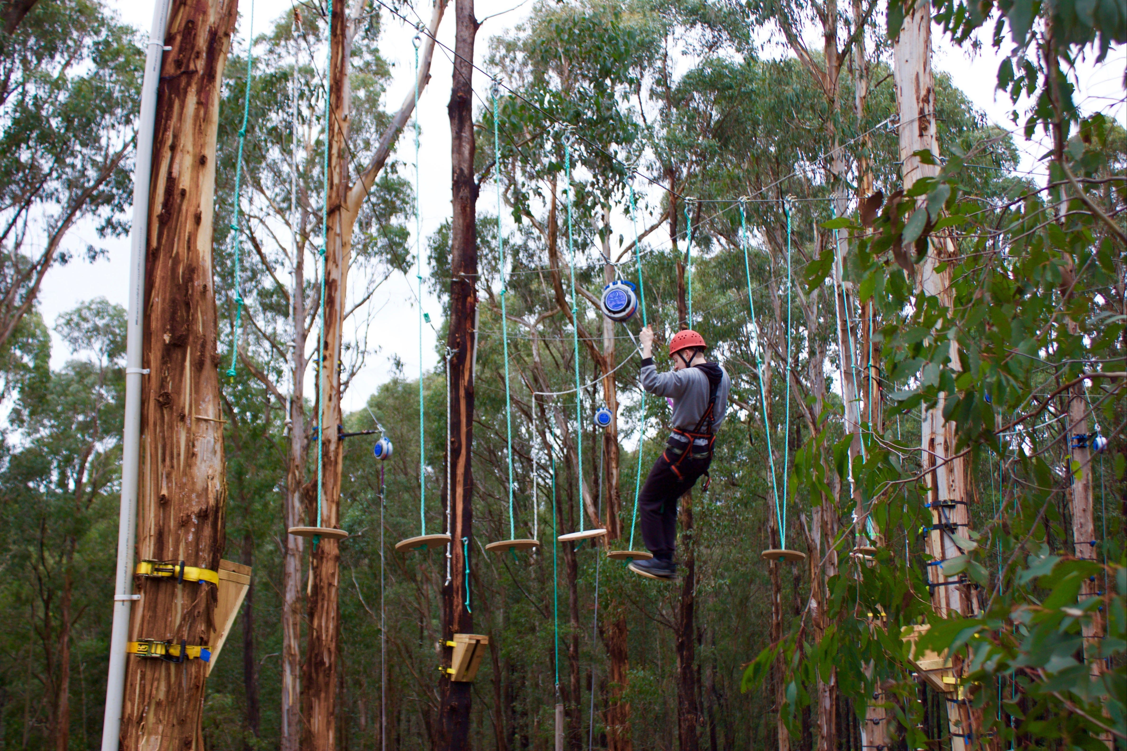 Kinglake Forest Adventures - Accommodation Cairns
