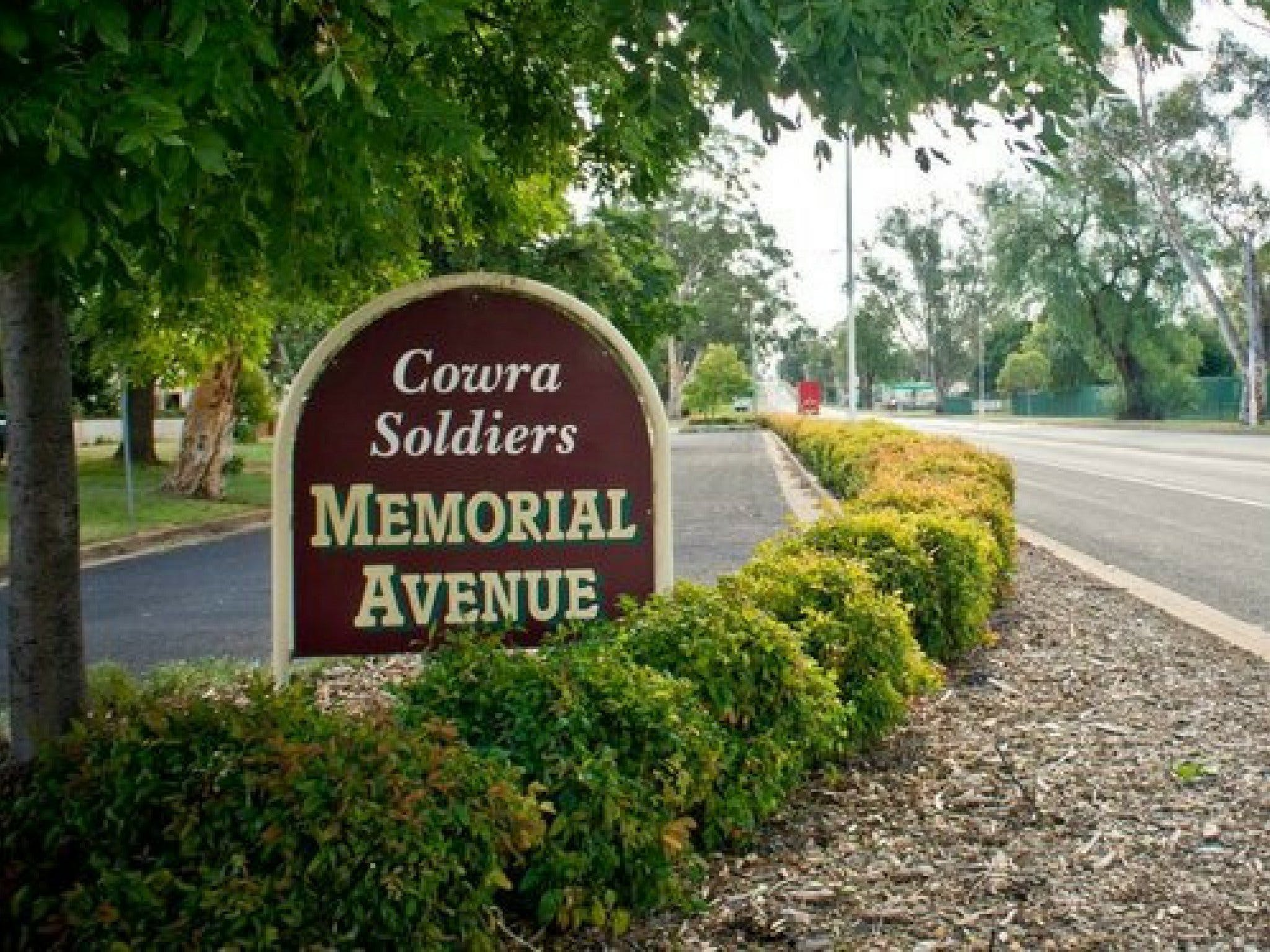 Memorial Avenue in Cowra - Accommodation Cairns