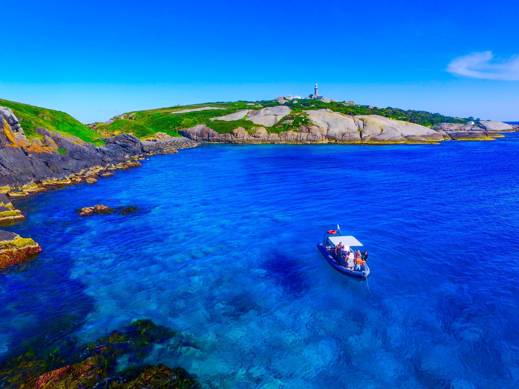 Snorkelling Montague Island - Accommodation Cairns