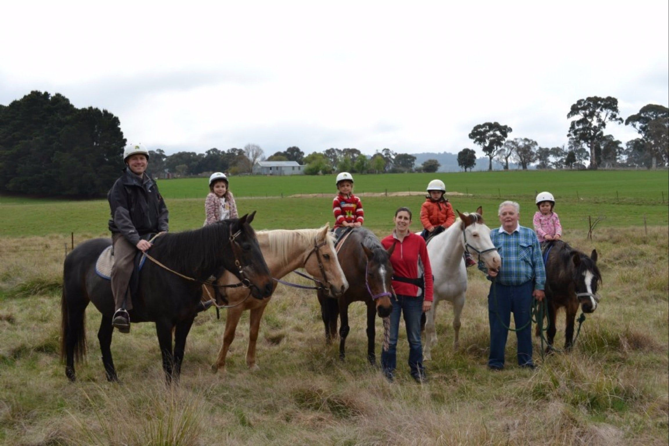 High Country Trail Rides - Accommodation Cairns