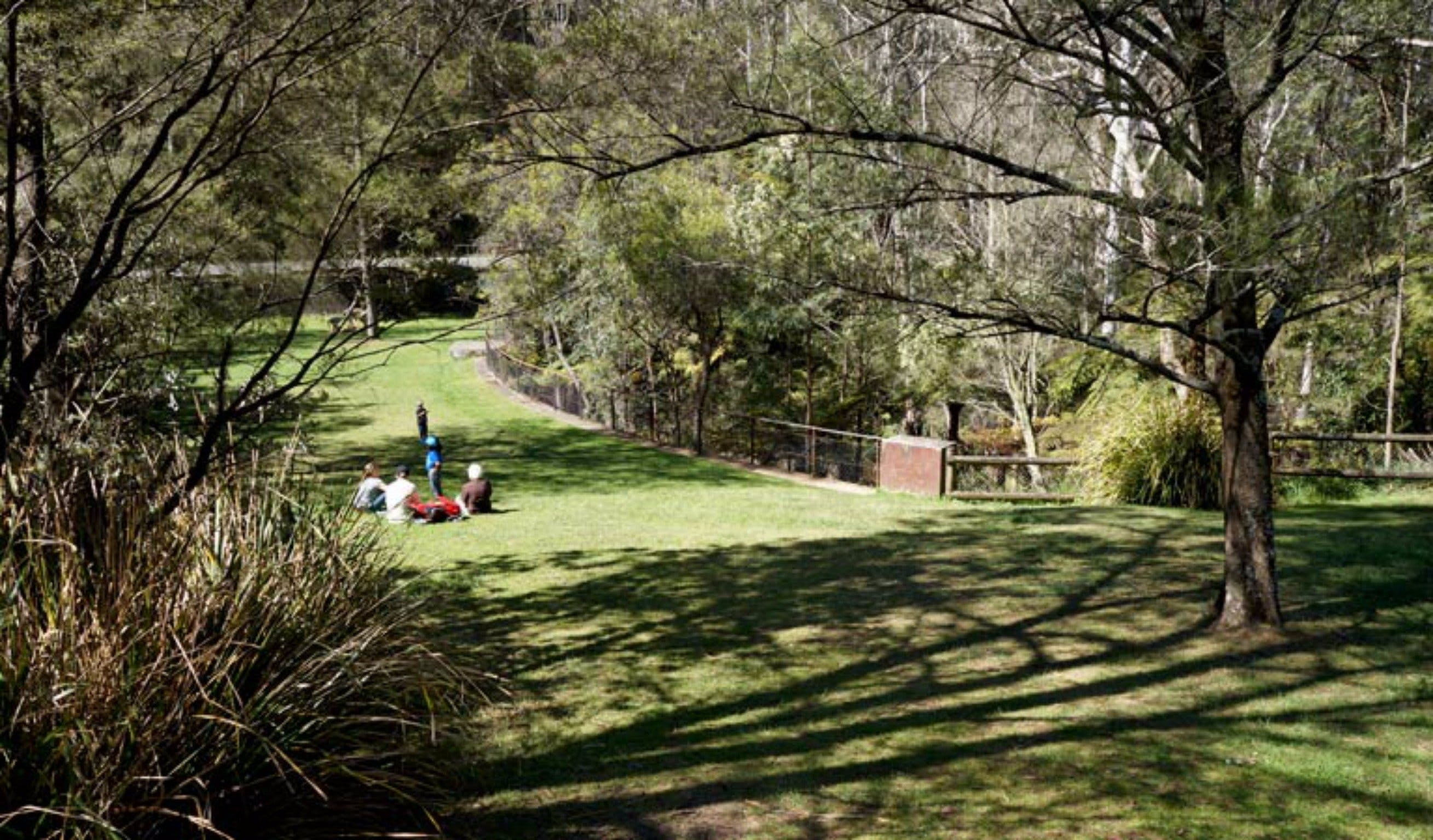 Leura Cascades picnic area - Accommodation Cairns