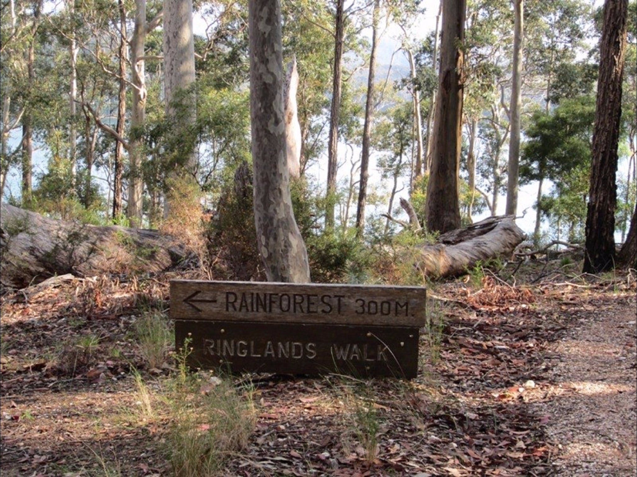 Ringlands Rotary Walk Narooma - Accommodation Cairns