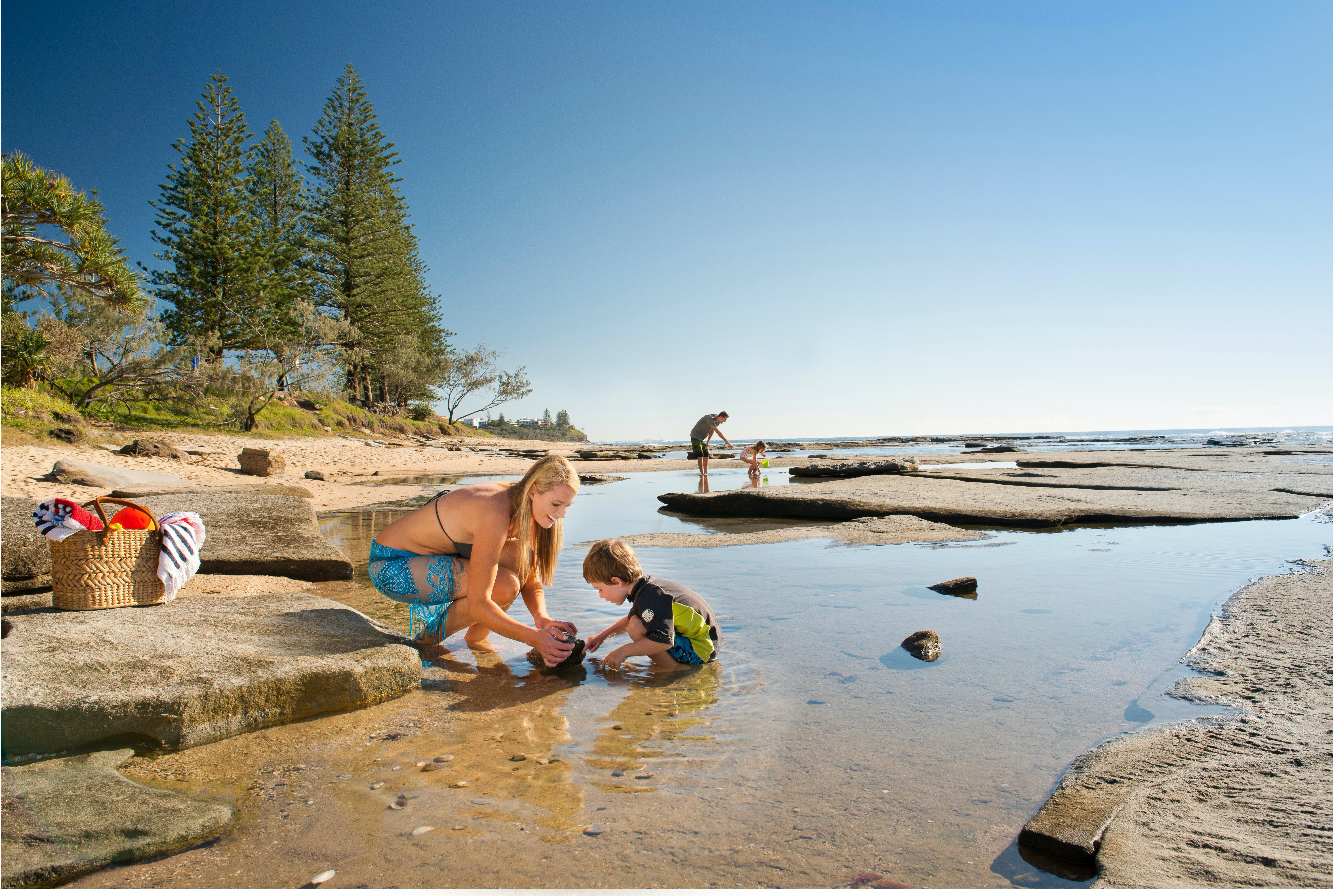 Shelly Beach - Accommodation Cairns