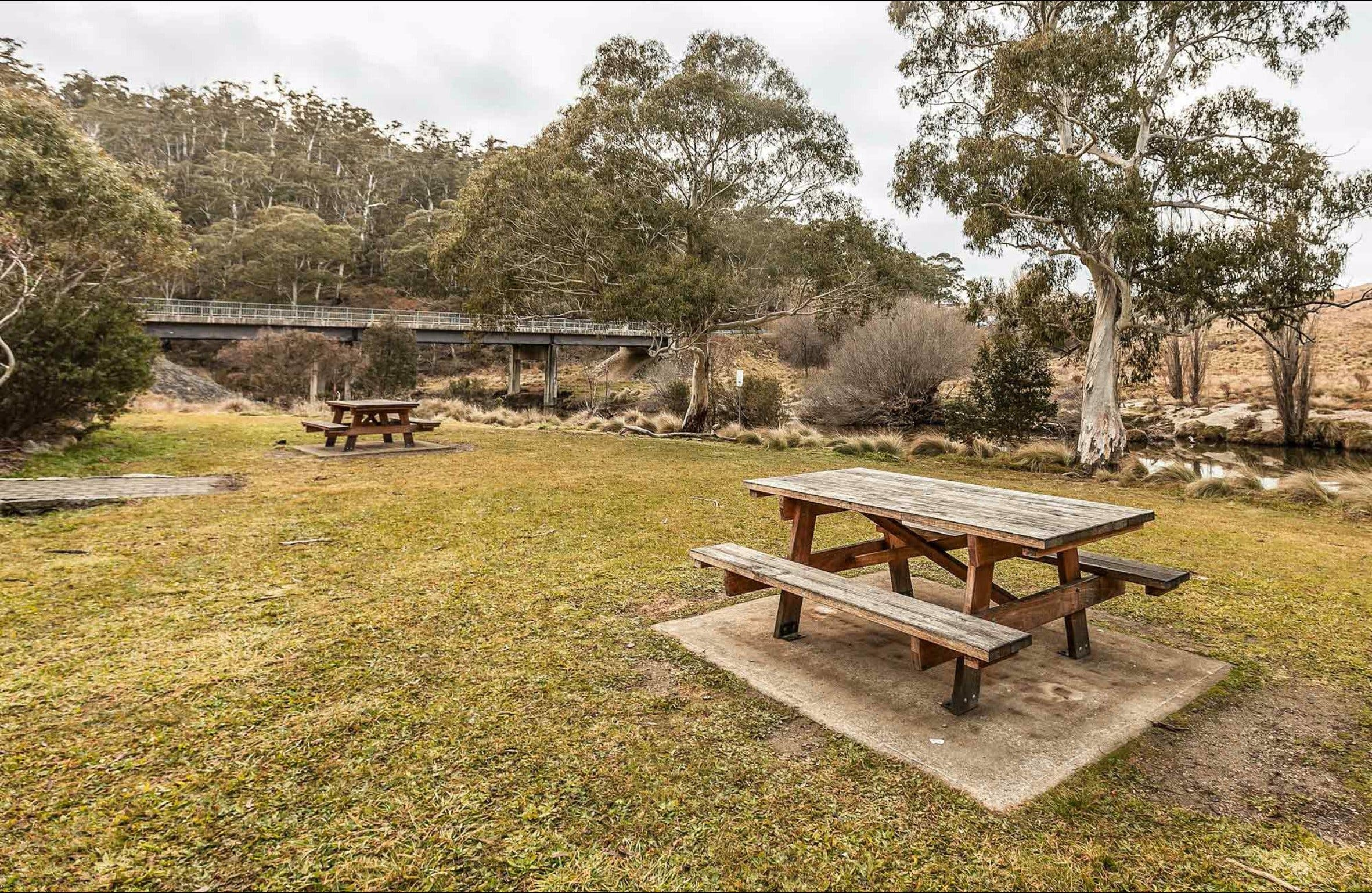 Thredbo River picnic area - Accommodation Cairns