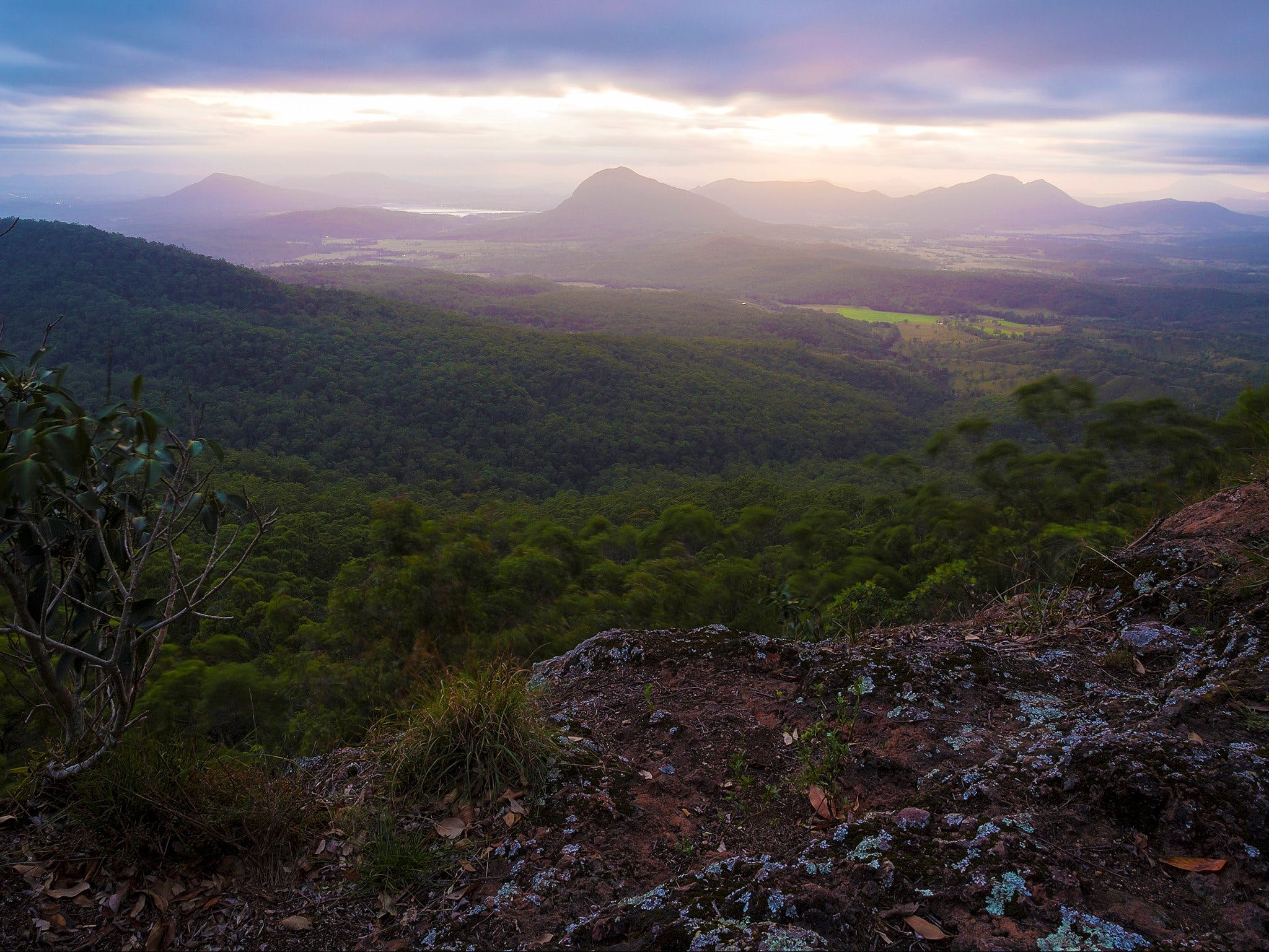 Cunninghams Gap and Spicers Gap Main Range National Park - Accommodation Cairns