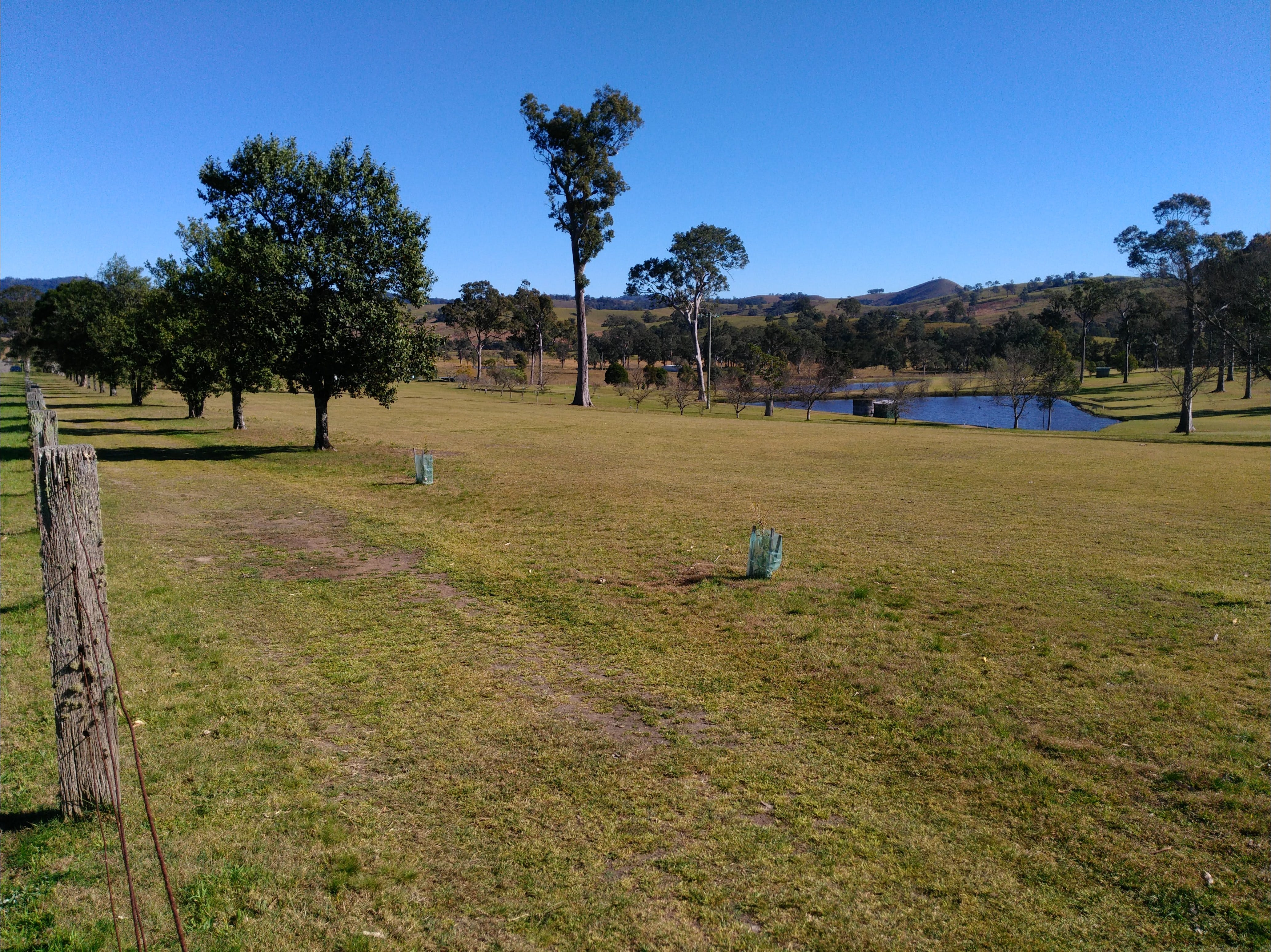 Dungog and District Golf Club - Accommodation Cairns