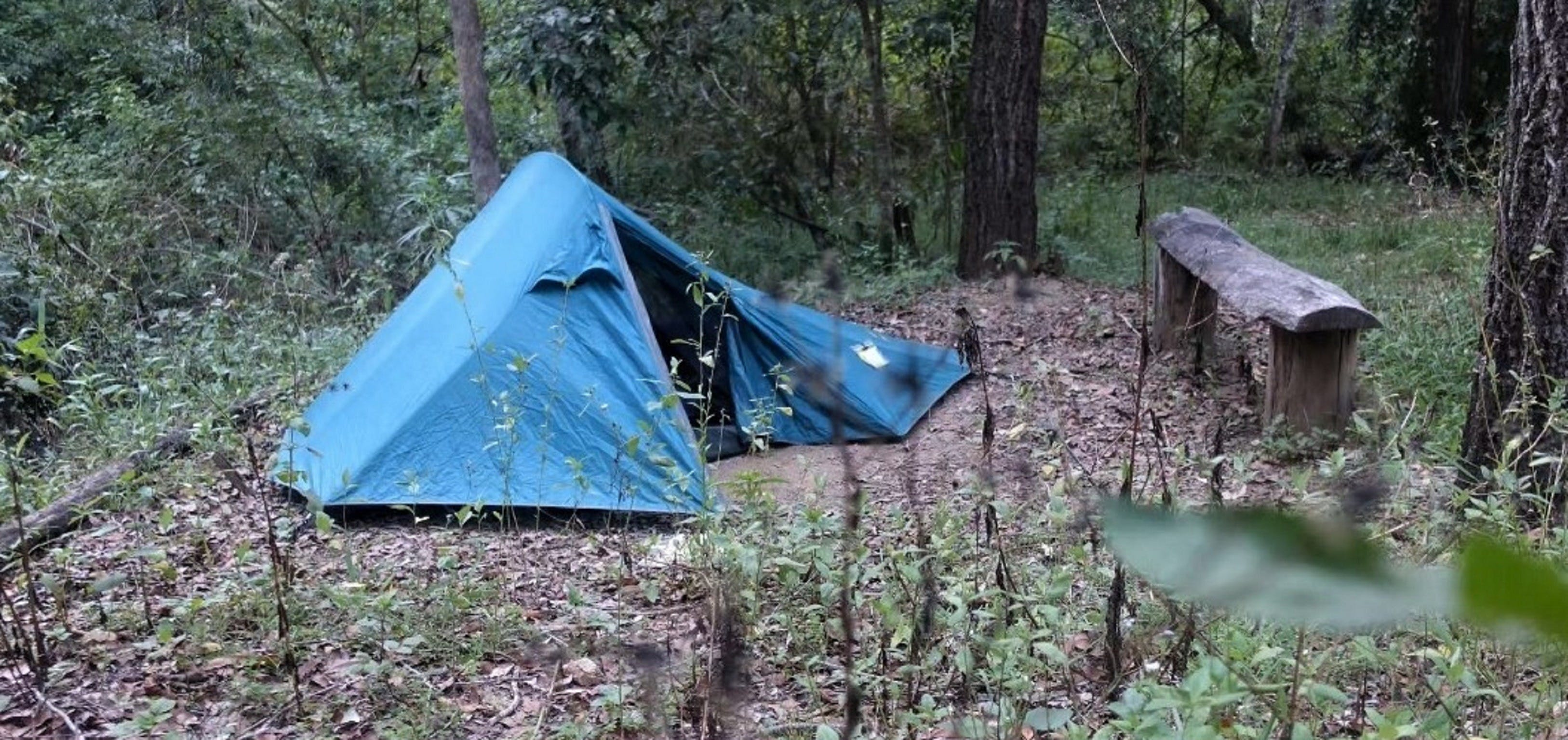 England Creek Bush Camp - Accommodation Cairns