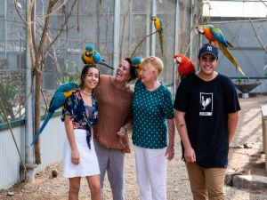 Maleny Botanic Gardens and Bird World - Accommodation Cairns