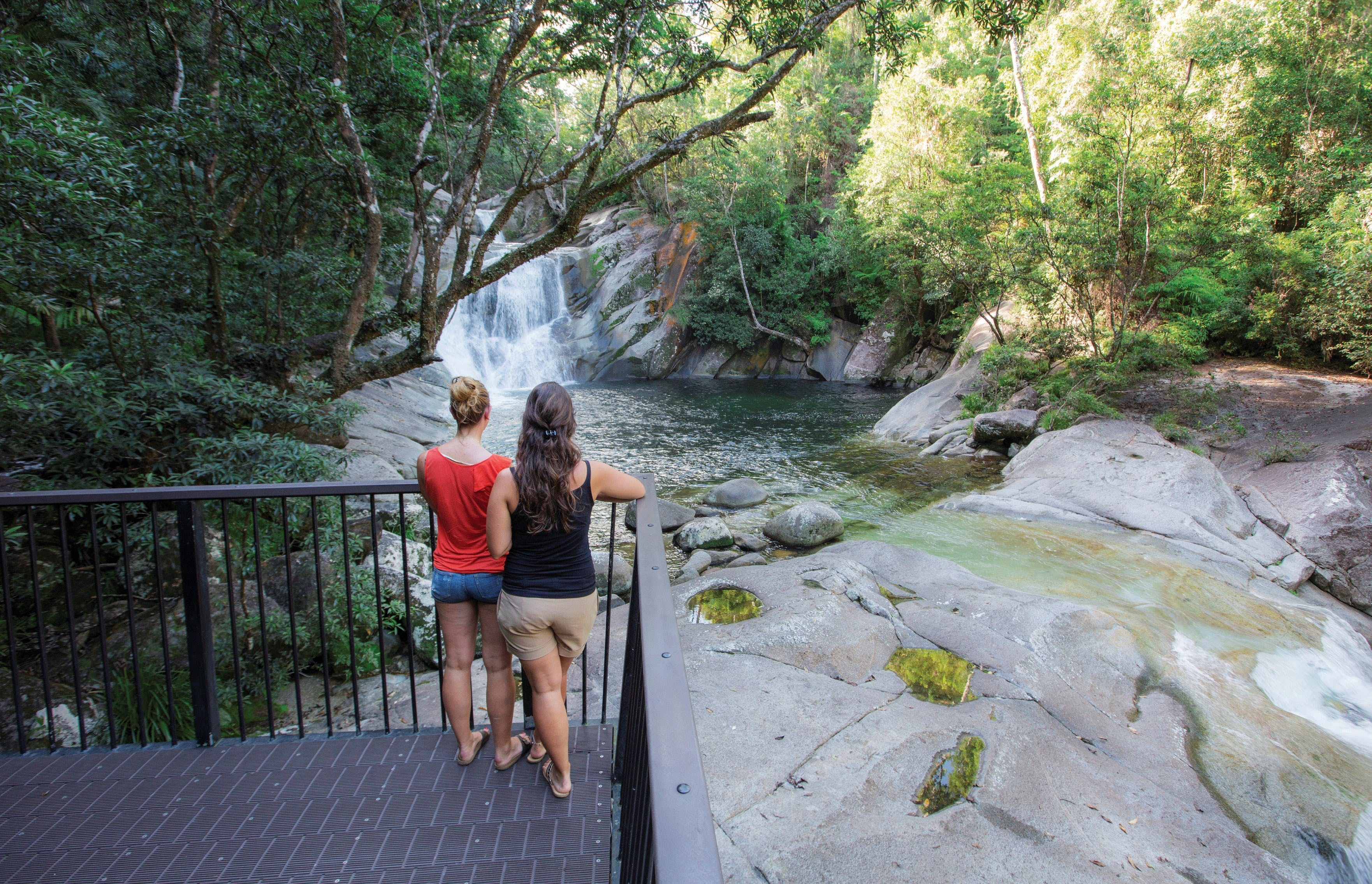 Josephine Falls walking track Wooroonooran National Park - Accommodation Cairns