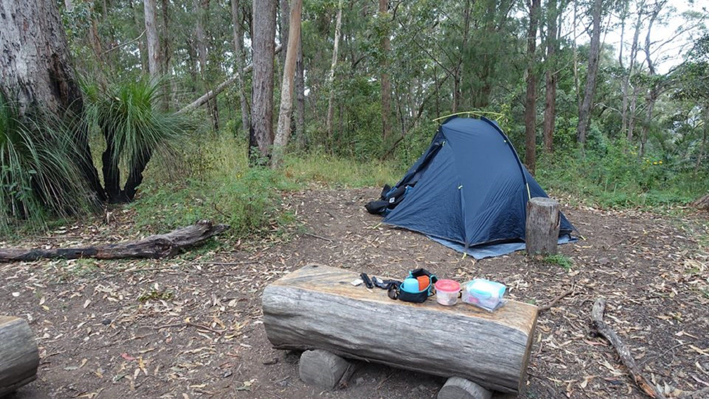 Northbrook Mountain Bush Camp - Accommodation Cairns