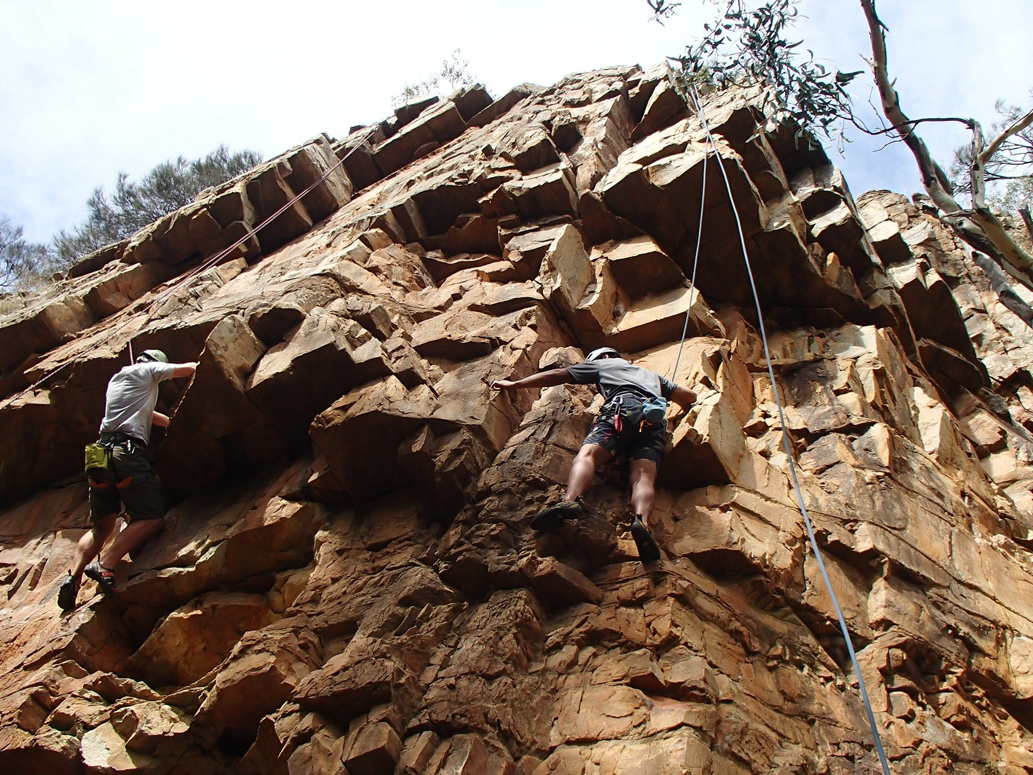Rock Climbing in Morialta - Accommodation Cairns