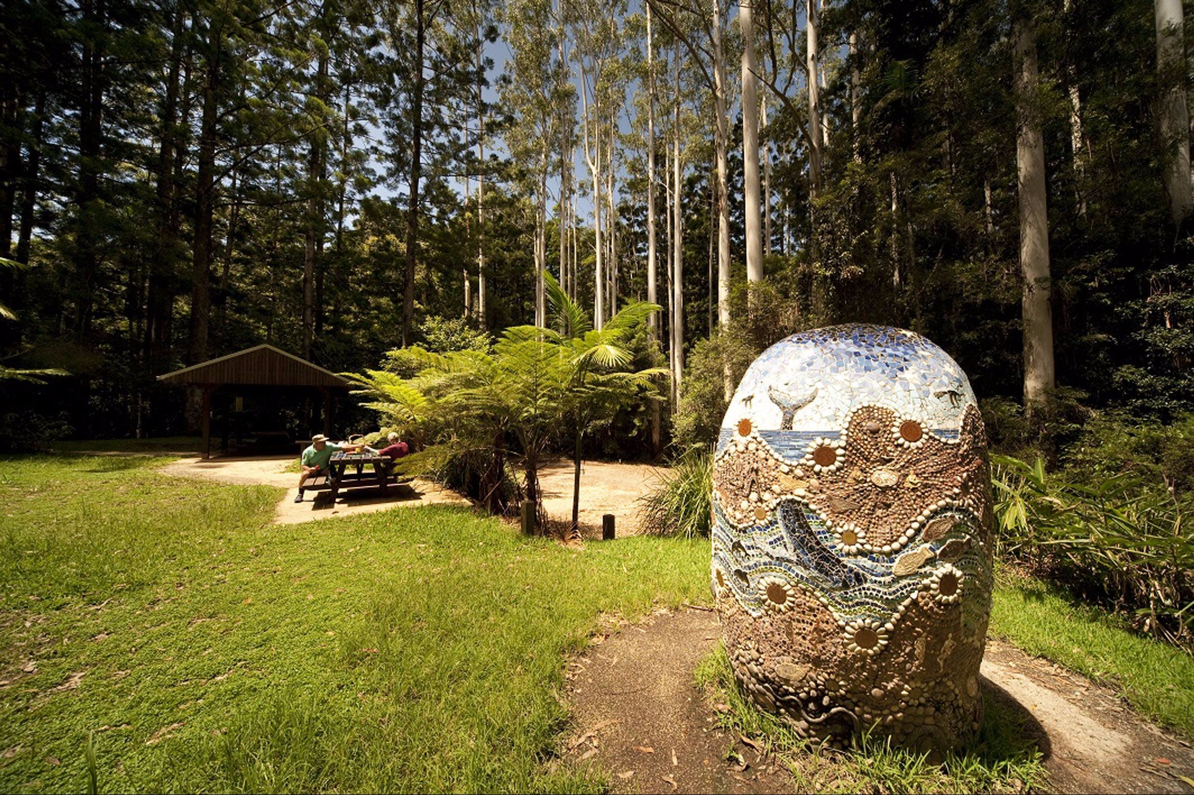 The Pines Picnic Area - Accommodation Cairns