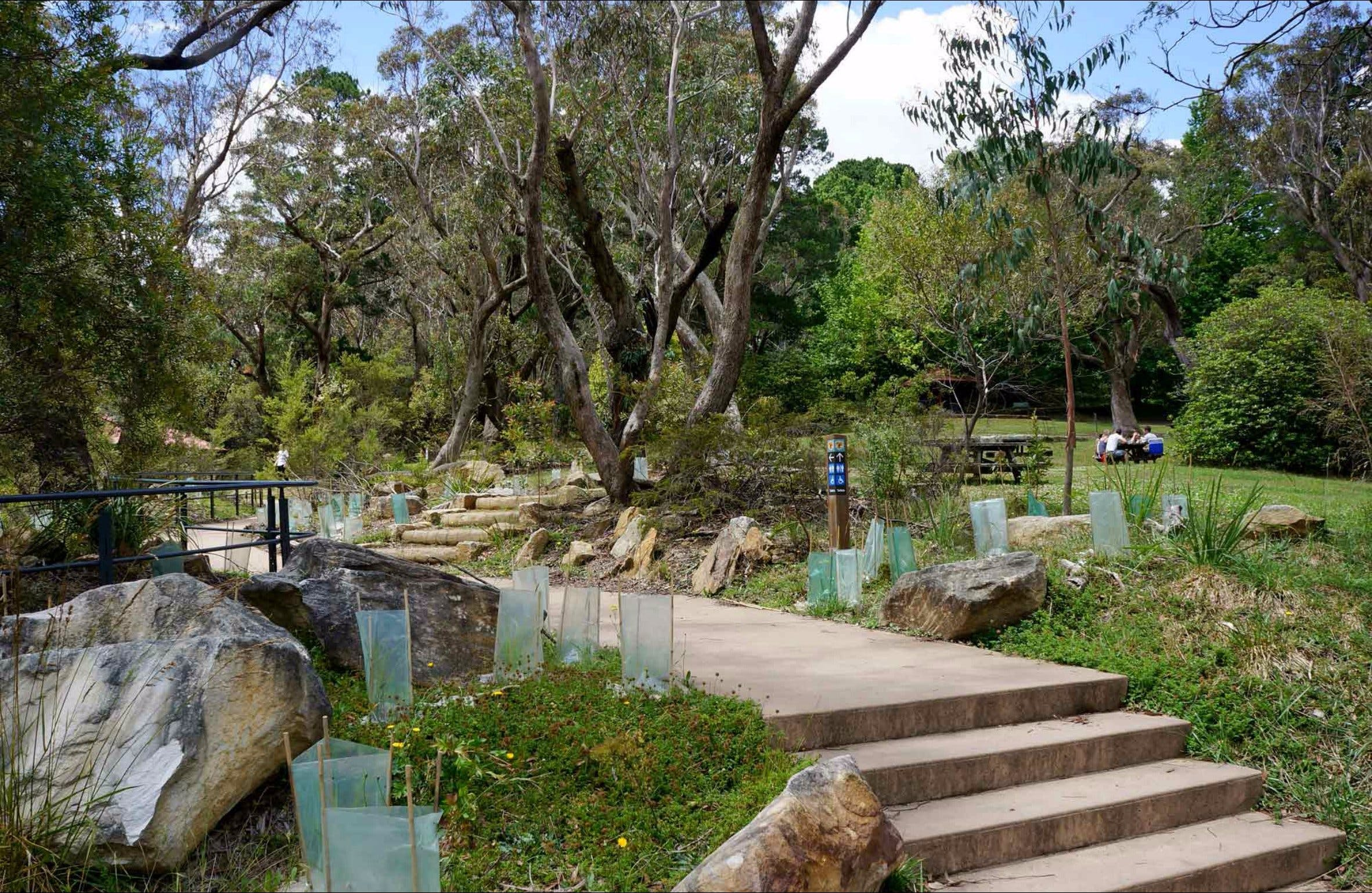 Wentworth Falls picnic area - Accommodation Cairns