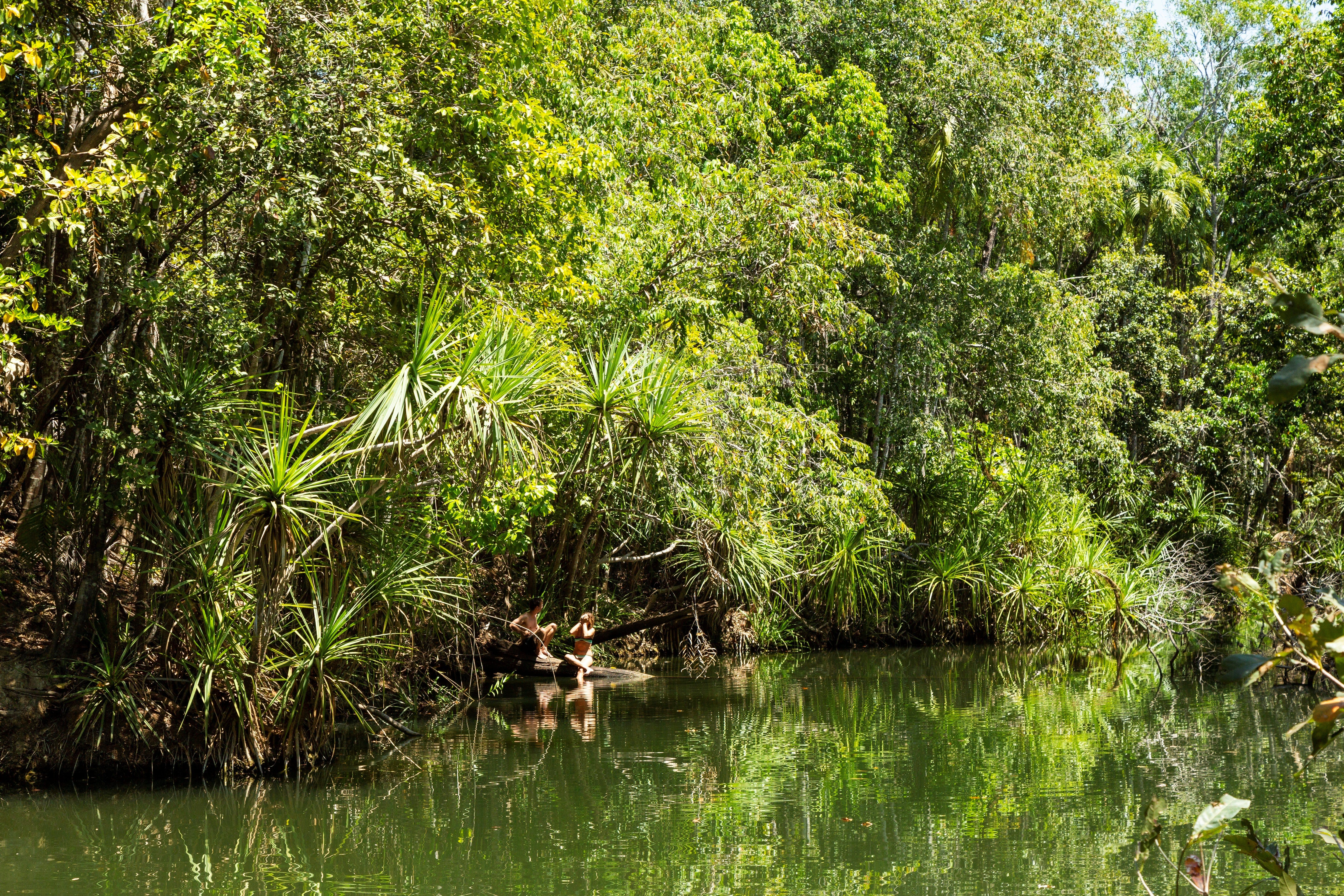 Berry Springs Nature Park - Accommodation Cairns