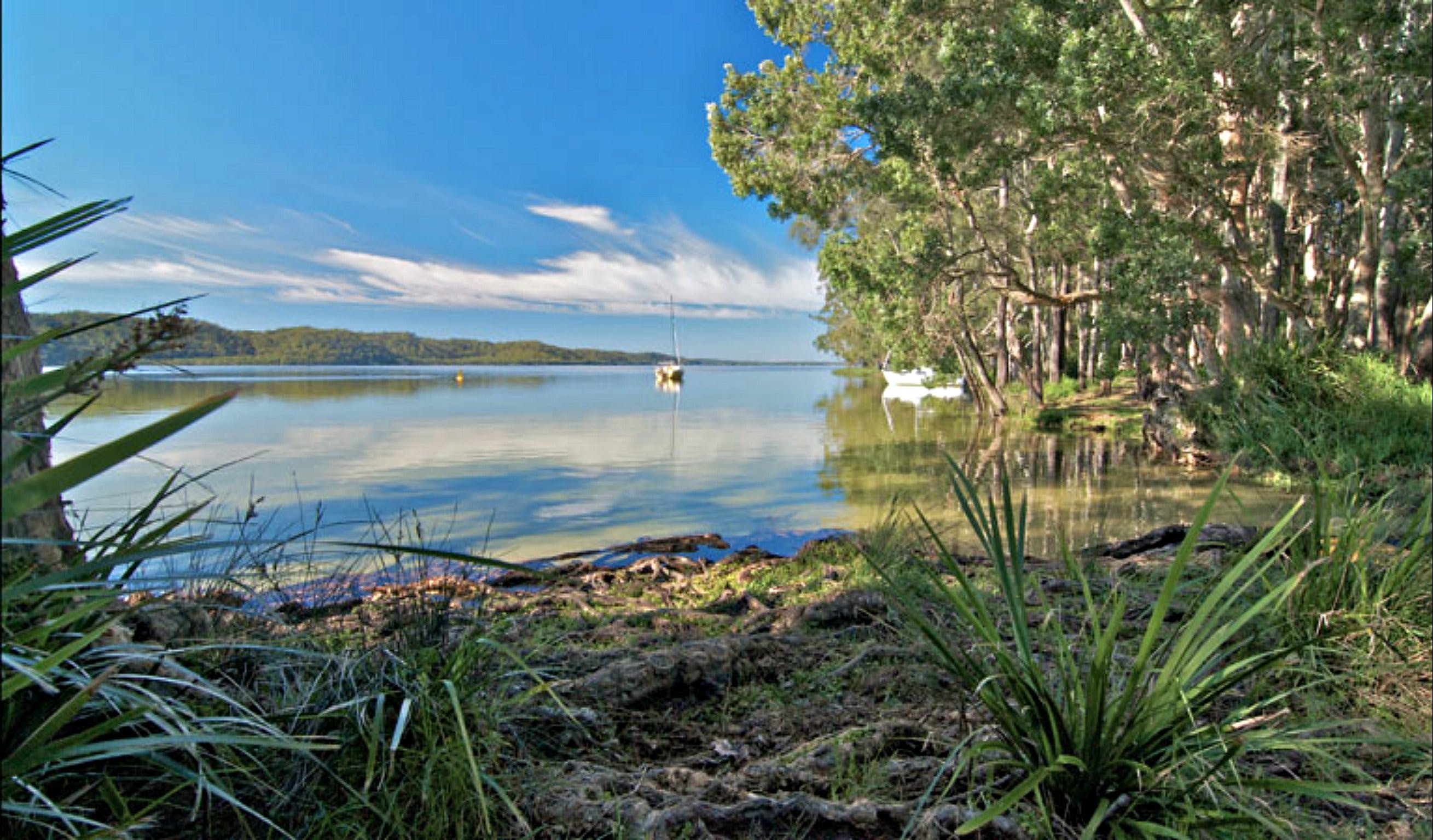 Black Oaks Picnic Area - Accommodation Cairns
