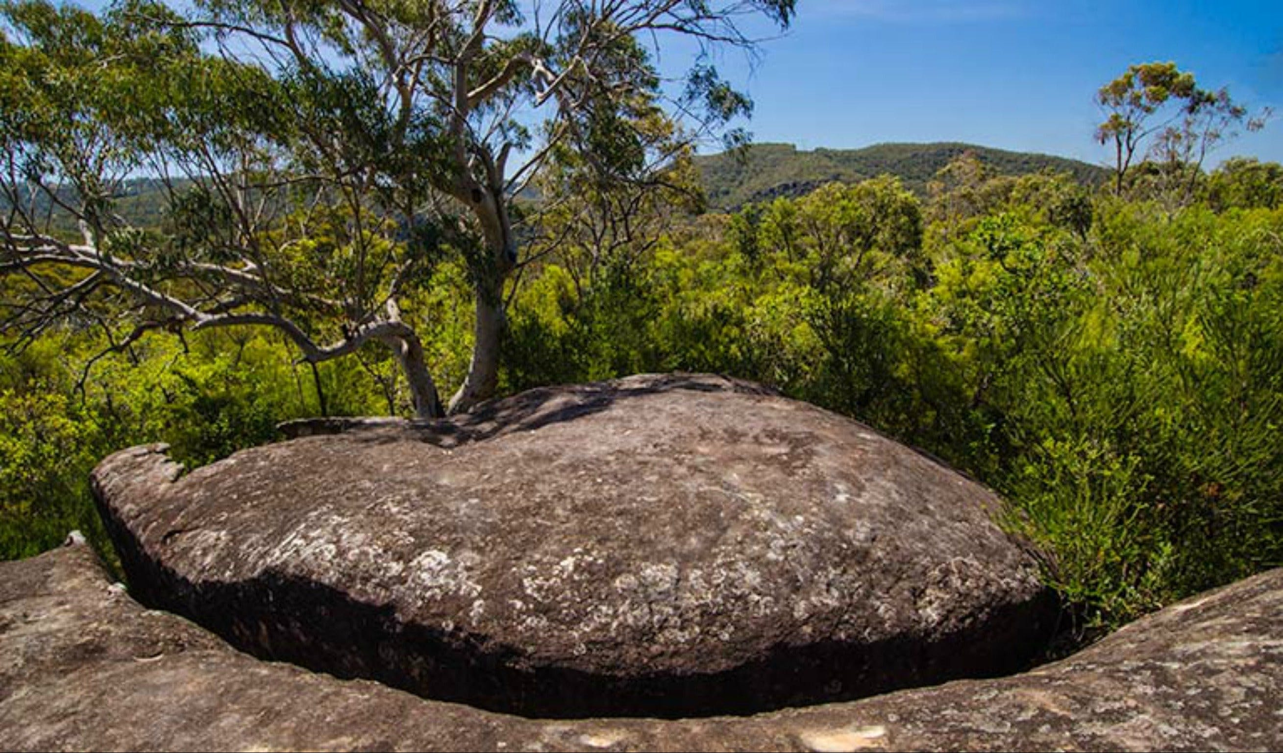 Marramarra Ridge to Smugglers Ridge walking track - Accommodation Cairns