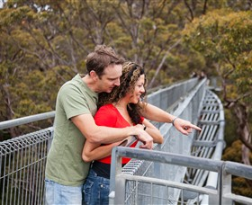 Valley of the Giants Tree Top Walk - Accommodation Cairns