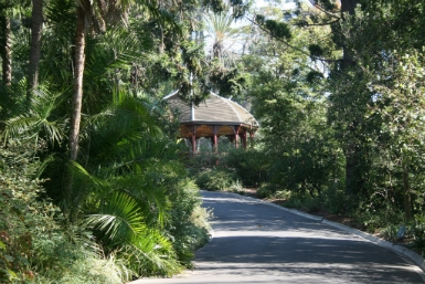 Royal Botanic Gardens Victoria - Accommodation Cairns
