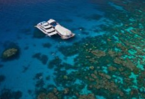 Great Adventures Reef and Green Island Cruises - Accommodation Cairns