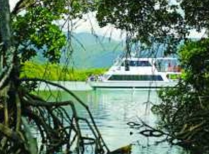 Cairns Harbour Cruises - Accommodation Cairns