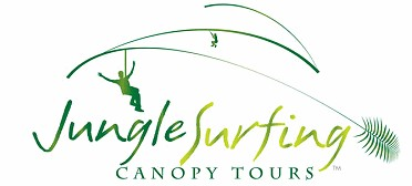 Jungle Surfing Canopy Tours and Jungle Adventures Nightwalks - Accommodation Cairns