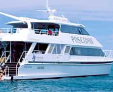 Poseidon Outer Reef Cruises - Accommodation Cairns