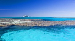 Reef Jet Cruises - Accommodation Cairns